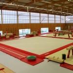 Gymnastique artistique d'entraînement