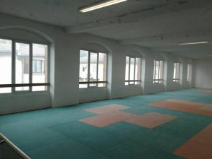 annonay-dojo-protection-tatamis-3